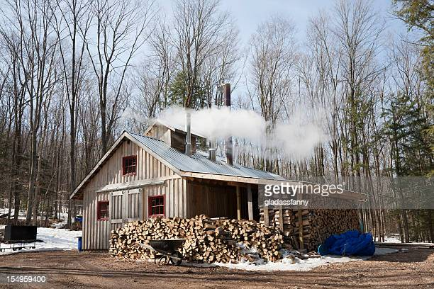 Modern Maple Sugar Shack