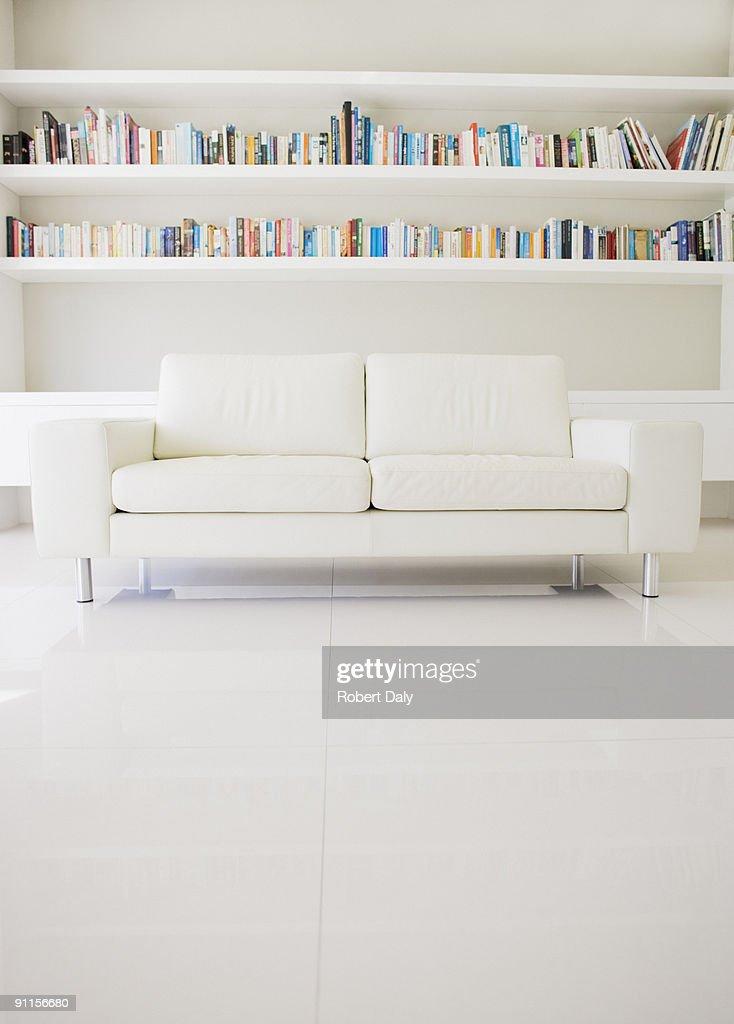 Modern sofa and shelves in living room