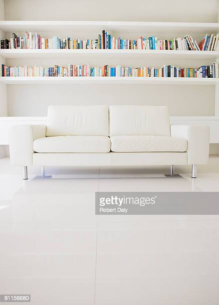 Modern sofa and shelves in living room