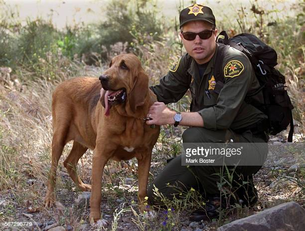 Modjeska Canyon––Orange County Sheriff Dept bloodhound 'Star' with his handler Rserve Deputy Matt Johnson followed deputies and the coroner into a...