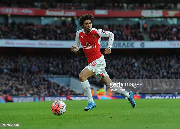 Mohamed Elneny of Arsenal during the match between Arsenal and Burnley in the FA Cup 4th round at Emirates Stadium on January 30 2016 in London...