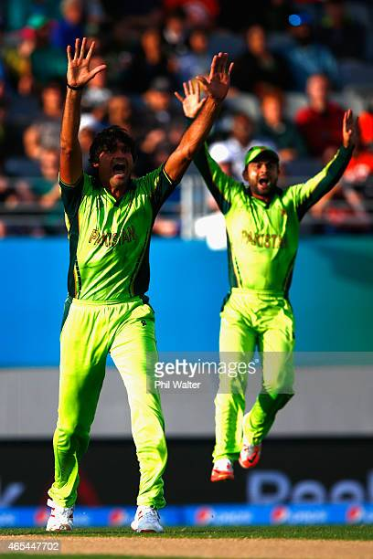 Mohammad Irfan of Pakistan celebrates his wicket of Quinton de Kock of South Africa during the 2015 ICC Cricket World Cup match between South Africa...