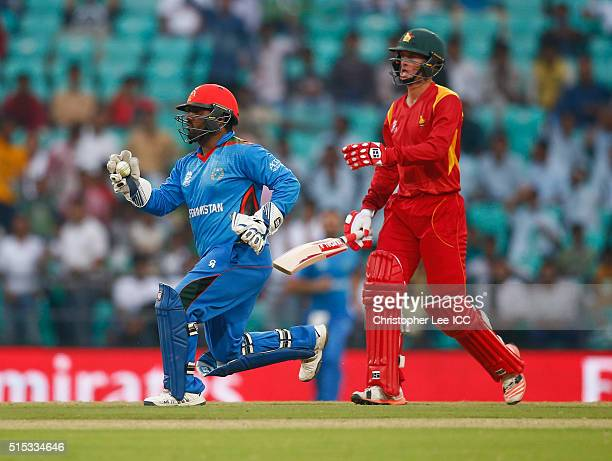 Mohammad Shahzad of Afghanistan celebrates stumpping out Sean Williams of Zimbabwe during the ICC Twenty20 World Cup Round 1 Group B match between...