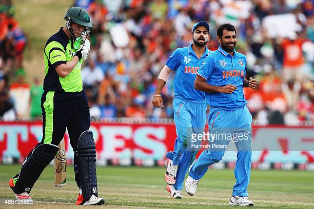 Mohammed Shami of India celebrates the wicket of Kevin O'Brien of Ireland during the 2015 ICC Cricket World Cup match between Ireland and India at...