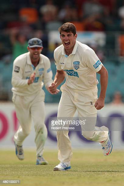 Moises Henriques of the Blues celebrates after taking the wicket of Shaun Marsh of the Warriors during day three of the Sheffield Shield match...