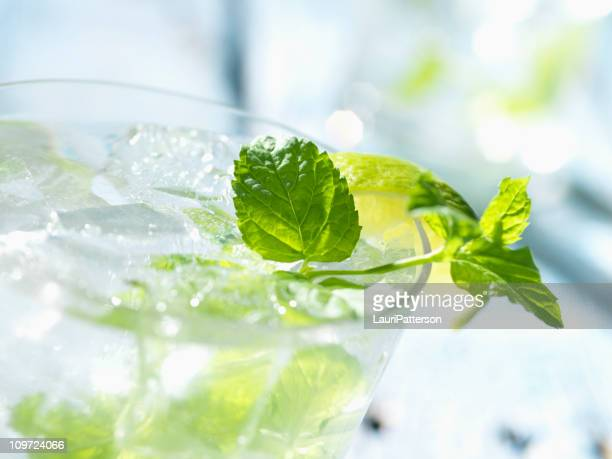 Mojito Stock Photos and Pictures | Getty Images