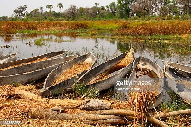 Mokoro canoes, Okavango Delta, Okavango Swamp, Botswana