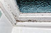 Fungal mold on a wall corner near a window