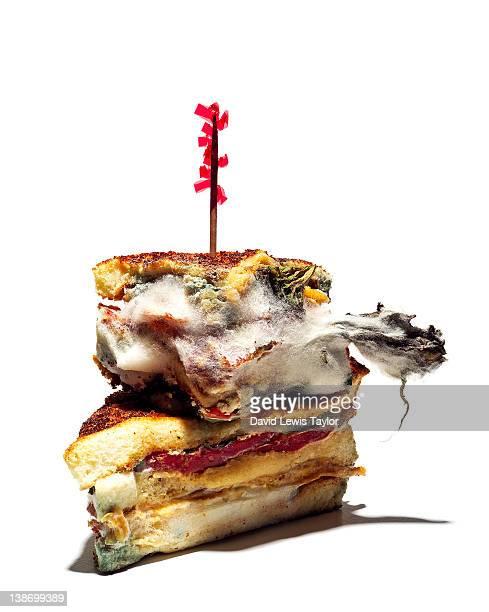 Moldy Club Sandwich