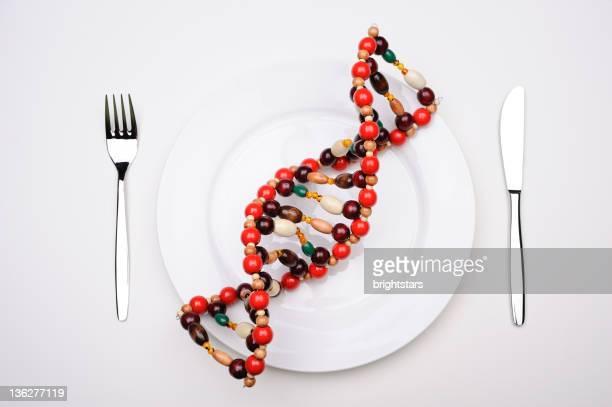 DNA-Molekül in einer Platte