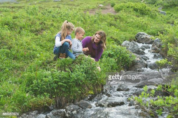 A mom and her children take a break from their hike to check out a little stream off the path.