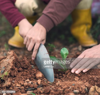 Mom and kid holding shovel and planting