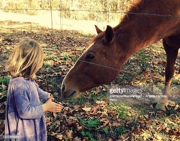 Moment of tenderness with child and horse
