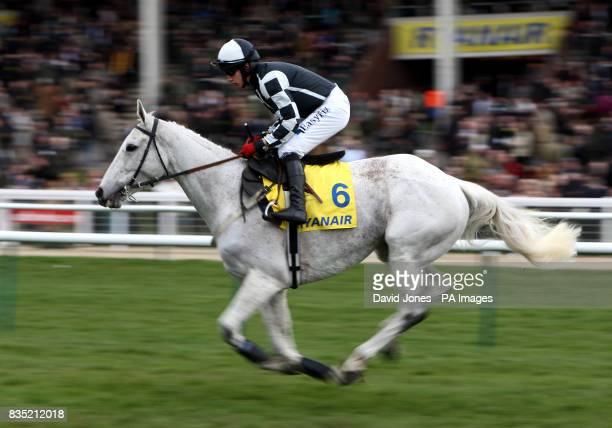 Monet's Garden ridden by Davy Condon in the Ryanair Steeple Chase