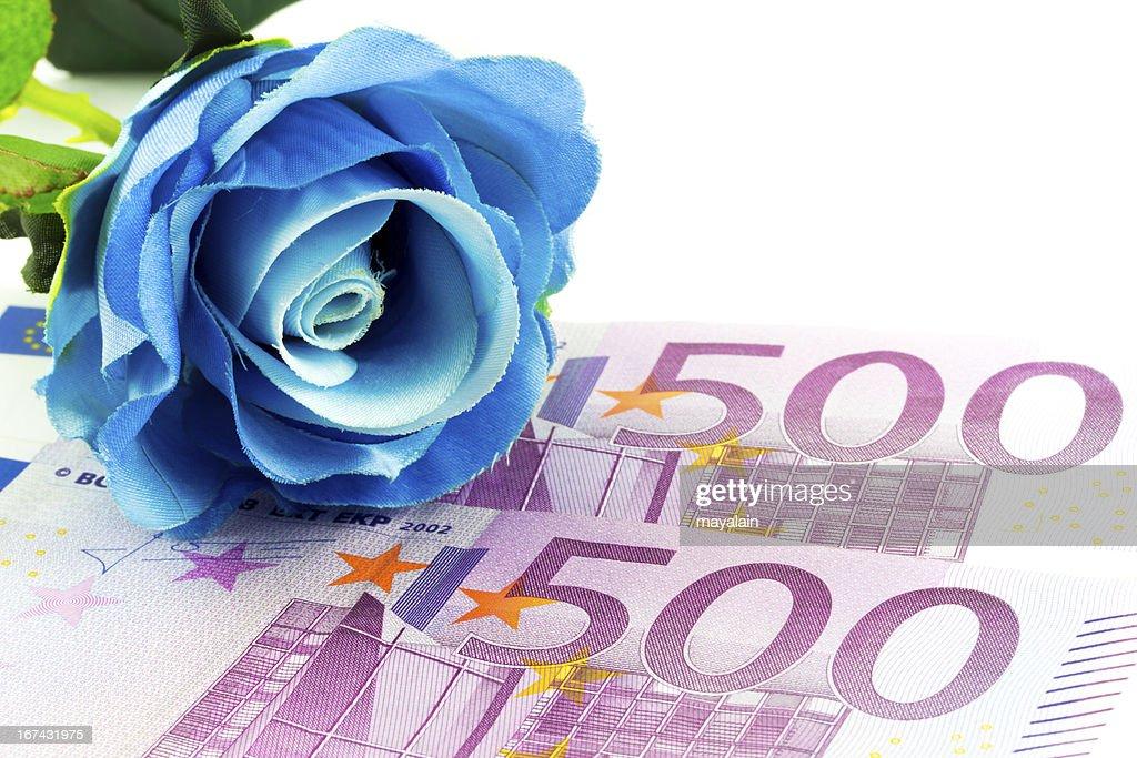 Dinheiro e Rosa Azul : Foto de stock