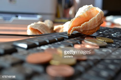 Money and shell : Stock Photo