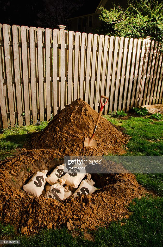 $ money bags buried in yard : Stock Photo