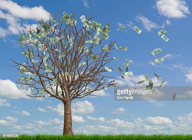Money blowing away from a money tree
