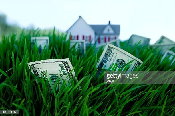 Geld wächst auf Gras