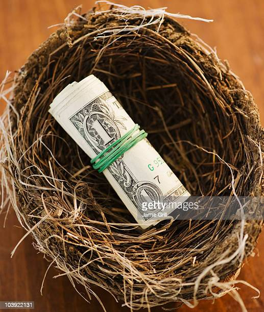 Money in a bird nest