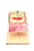Roll of one hundred New Taiwan Dollar bill in a mousetrap isolated on white background