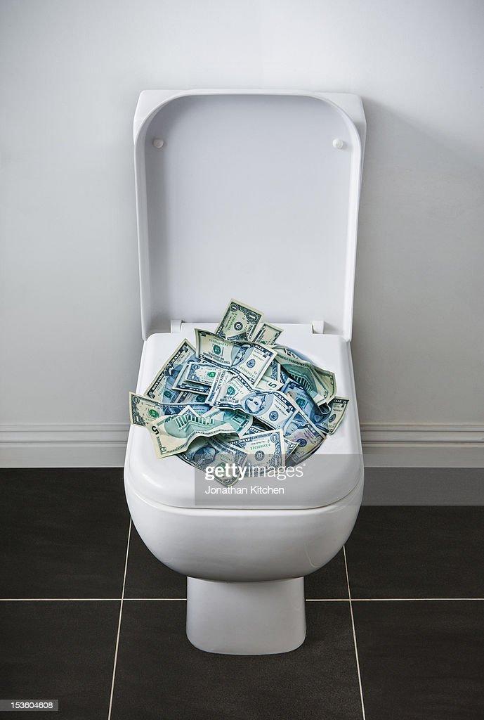 Money in the Toilet : Stock Photo
