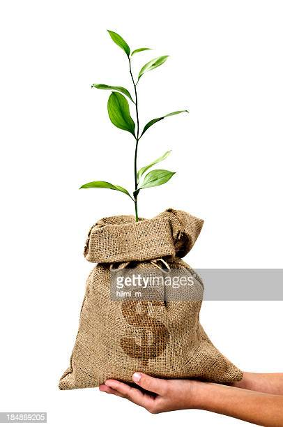 Money Tree/Money Bag With Dollar in Human Hand