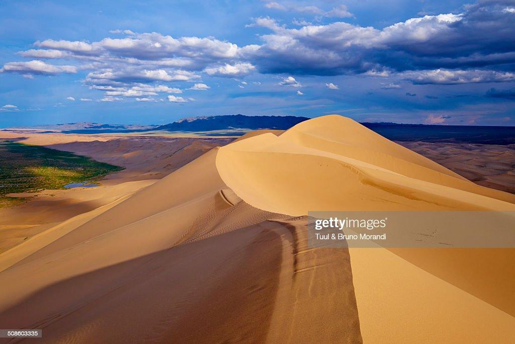 Mongolia, Gobi desert, Khongoryn Els dunes : Foto de stock