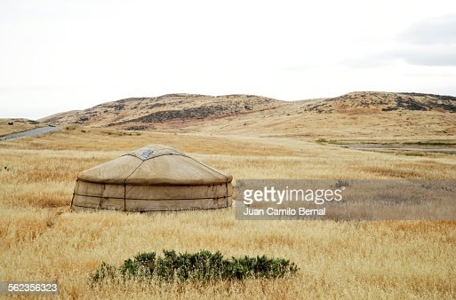 Mongolian ger surrounded by dry grass