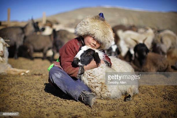 Mongolian nomadic boy cuddles sheep