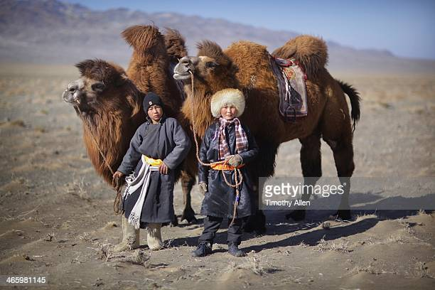 Mongolian nomadic boys & Bactrian camels
