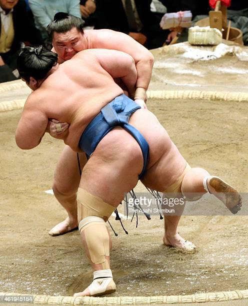 Mongolian yokozuna Hakuho pushes ozeki Kotoshogiku out of the ring to win during day twelve of the Grand Sumo New Year tournament at Ryogoku...