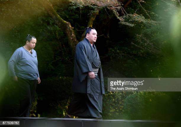 Mongolian Yokozuna Harumafuji is seen on arrival at his Isegahama Stable's temporary headquarters on November 14 2017 in Dazaifu Fukuoka Japan...