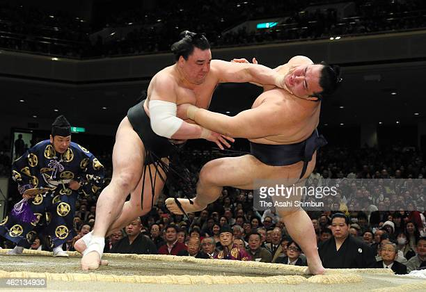 Mongolian yokozuna Harumafuji pushes ozeki Kisenosato down to win during day fifteen of the Grand Sumo New Year Tournament at Ryogoku Kokugikan on...