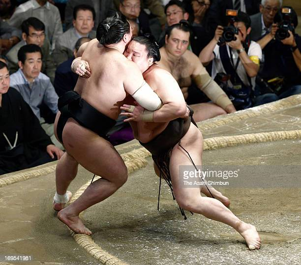 Mongolian Yokozuna sumo's grand champion Hakuho whose real name is Mnkhbatyn Davaajargal pushes his fellow yokozuna Harumafuji whose real name is...