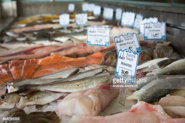 Monk fish and all the other fish on display in the harbour shop Folkestone Trawlers process manage and market all fresh fish that is landed into...