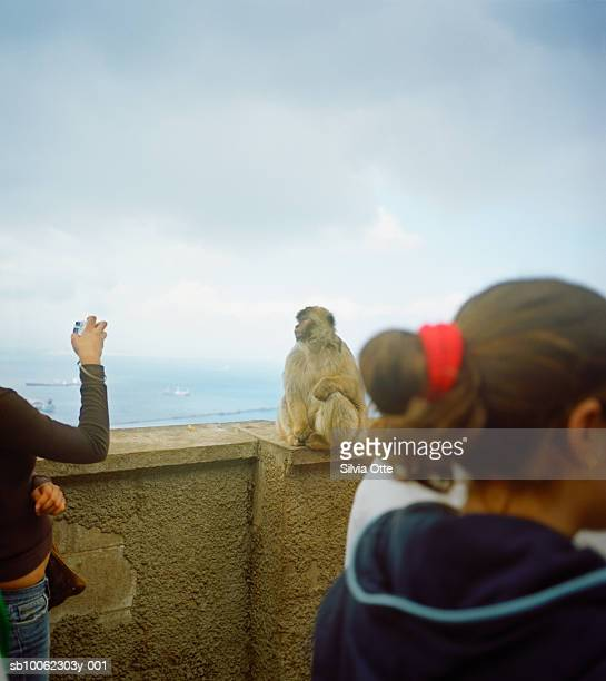 Monkey being photographed by children (10-13) on Rock of Gibraltar