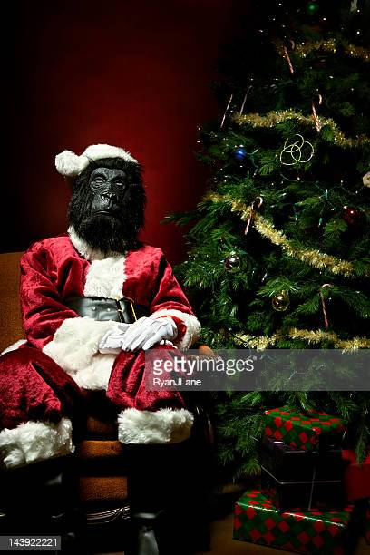 Monkey Claus at Christmas