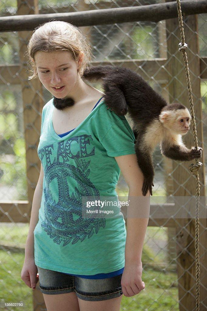 Monkey climbing on girl
