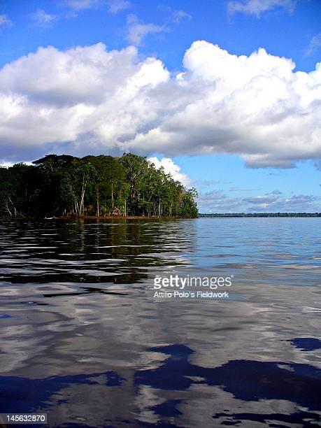 Monkey Island near Leticia