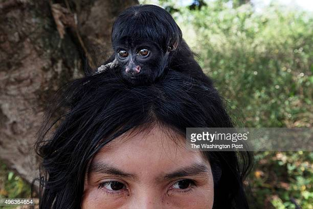 A monkey rests on the head of Ayhua Awá outside Juriti Maranhão Brazil on July 31 2015 Small monkeys are among the pets living in the village larger...
