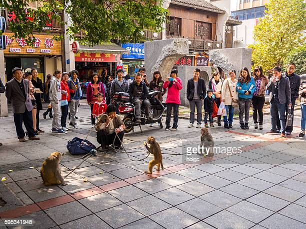 Monkeys performing in Changsha, China