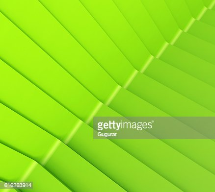 Monochrome green Line Pattern Art Graphic : Stock Photo