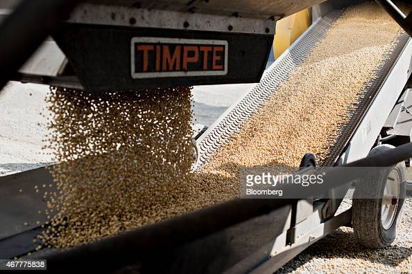Monsanto Co Asgrow brand soybeans are delivered at the Crop Protection Services facility in Manlius Illinois US on Friday March 20 2015 Monsanto Co...