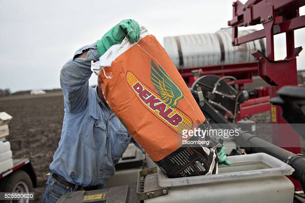 Monsanto Co DeKalb brand hybrid corn is loaded into a Case IH planter in a field in Princeton Illinois US on Monday April 18 2016 The US Department...