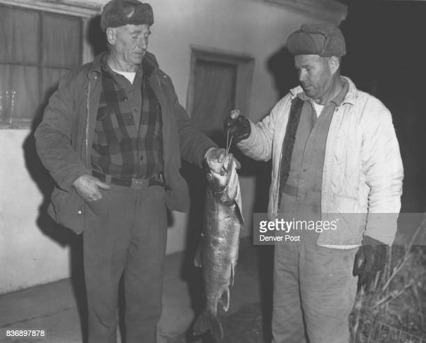 Monster From the Ice George King the chief of police at Buena Vista Colo shows off the 16 1/4pound Mackinaw he caught recently at Twin Lakes Watson...