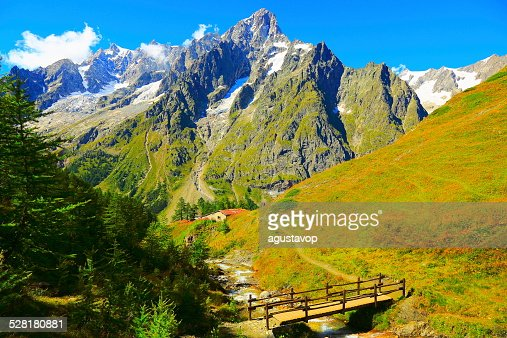 Mont Blanc Grandes Jorasses e Prados alpino-Itália