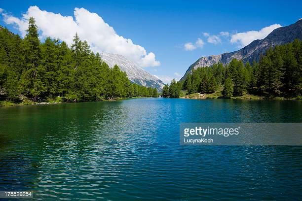 Montain lago