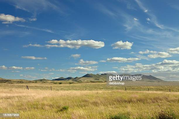 Montana Big Sky Over Golden Prairie