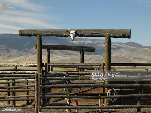 USA, Montana, Bozeman, gate leading into paddock